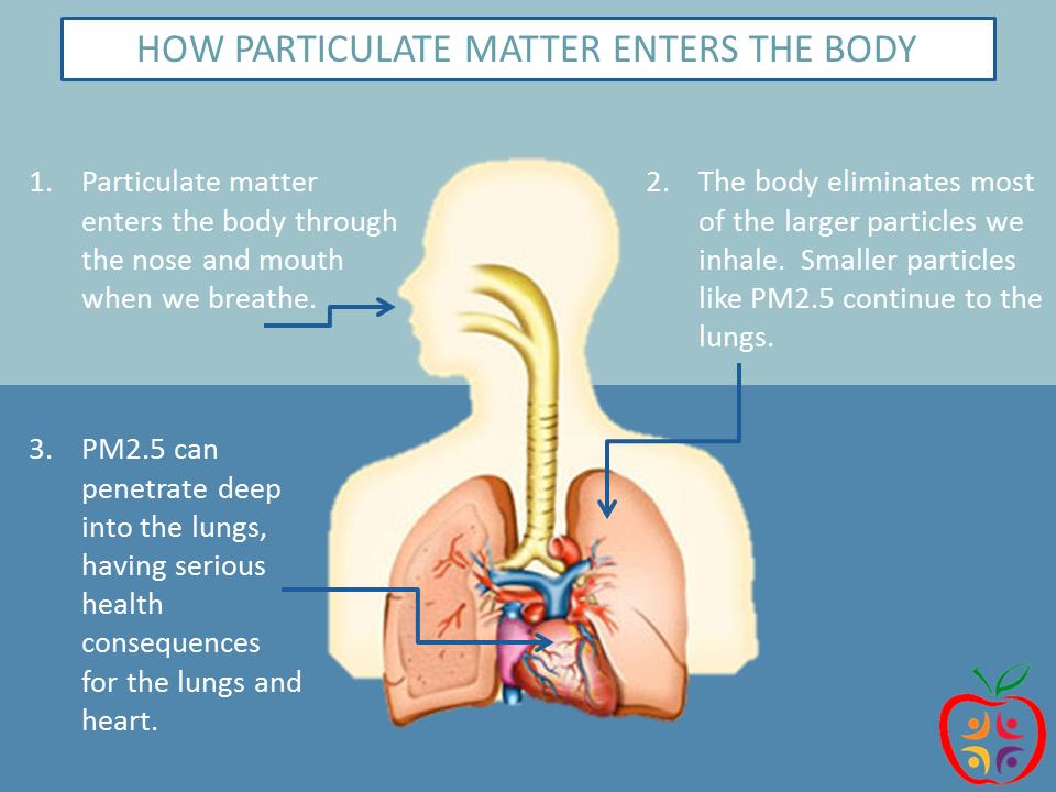 http://www.health.utah.gov/utahair/pollutants/PM/